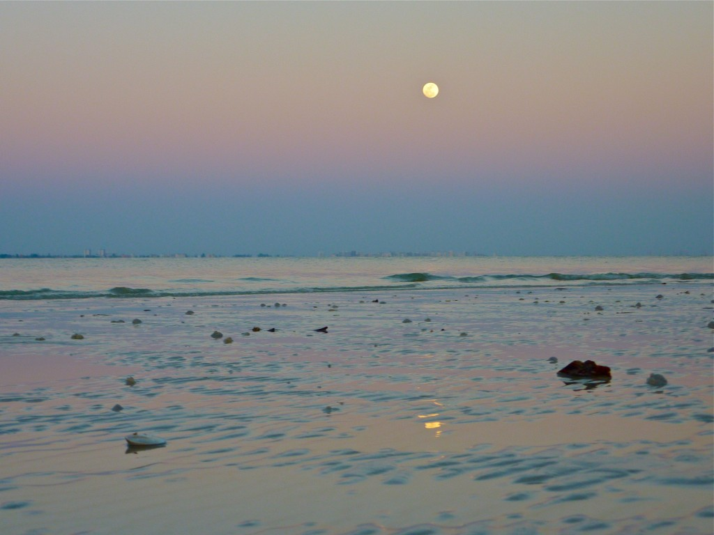 Sanibel full moon low tide