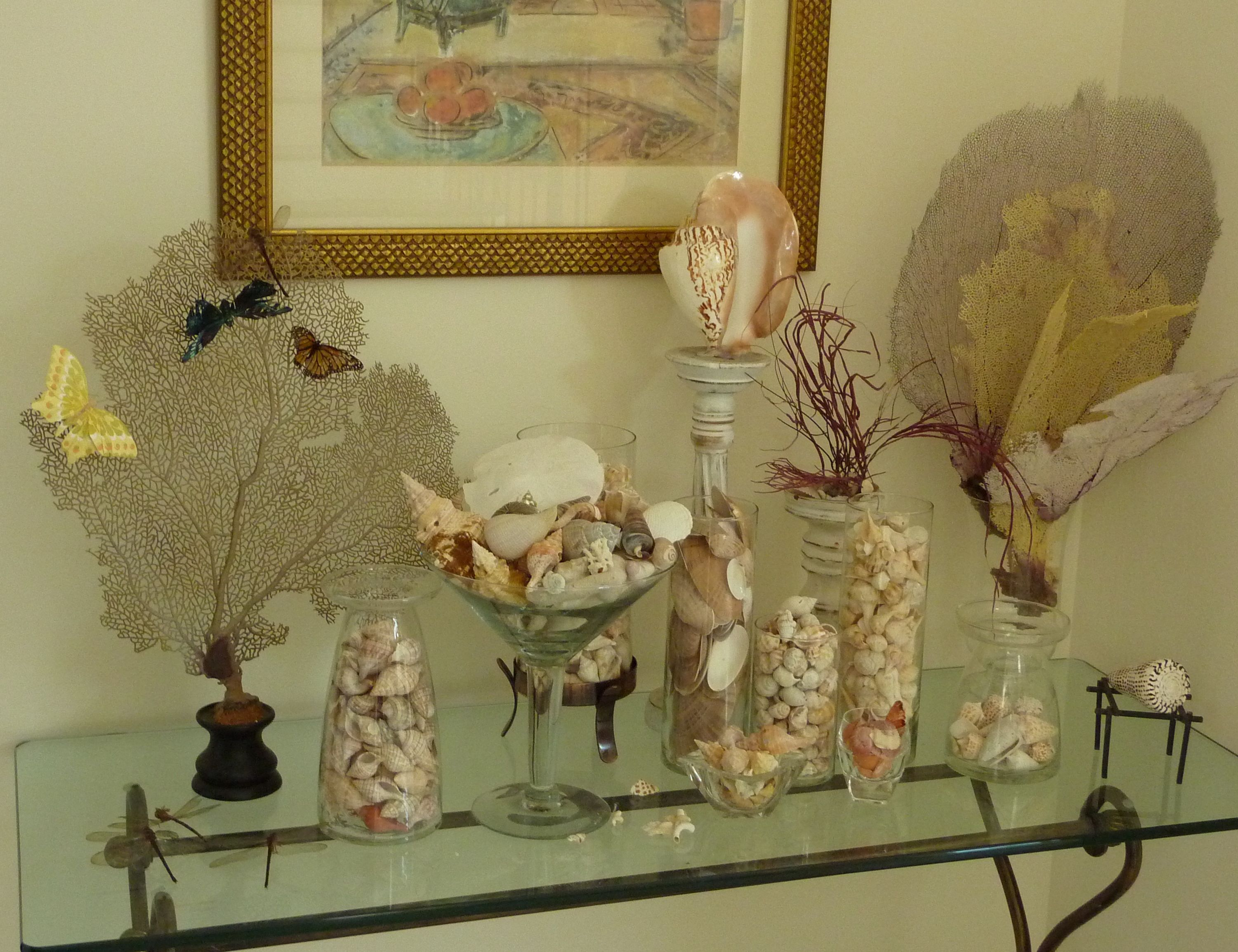 Mix match decorating with seashells pinterest for Ideas for displaying seashells